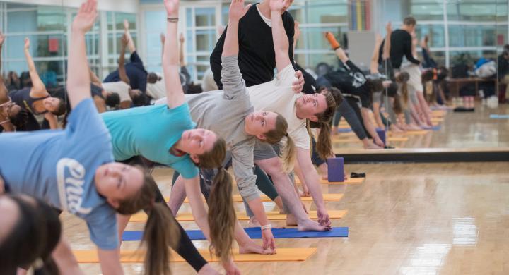 4-Session Intro to Ashtanga Yoga Workshop F2019 - Sessions I & II
