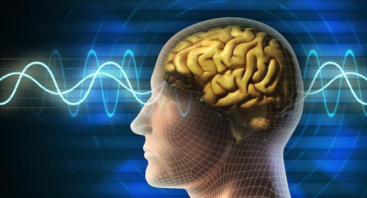 brain and radio wave energy