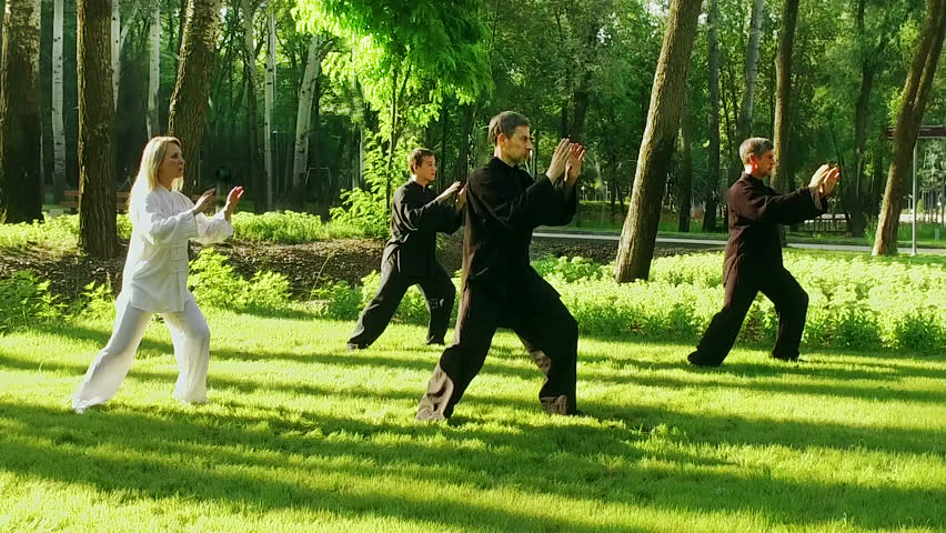 Qigong for Traditional Chinese Meditation and Martial Arts
