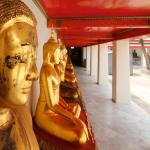 Summer 2014: Buddhism - RELB 2100