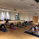 Led Primary Series Ashtanga Yoga