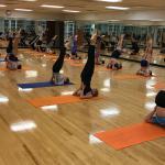 Fall 2018: Yoga — KINE 1410