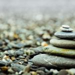 Spring 2017 : Foundations of Mindfulness Practice - NUIP 2210
