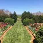 Morven Spring Into Wellness Retreat