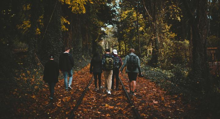 Fall 2018: Meditation Peer Leadership — KINE 1050